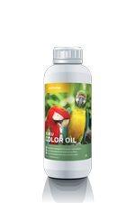 color oil